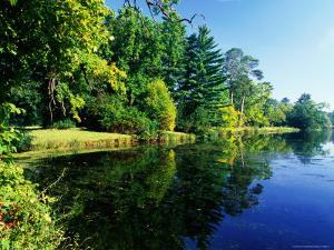 Autumn Reflections on Pond at Lednice/ Valtice Parkland Complex, Lednice by Richard Nebesky