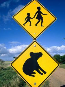 Children Crossing and Koala Crossing Signs on Dirt Road, Wonthaggi, Australia by Richard Nebesky