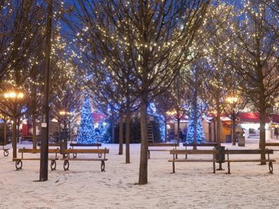 Christmas Decoration at Old Town Square's Park at Twilight, Stare Mesto, Prague, Czech Republic