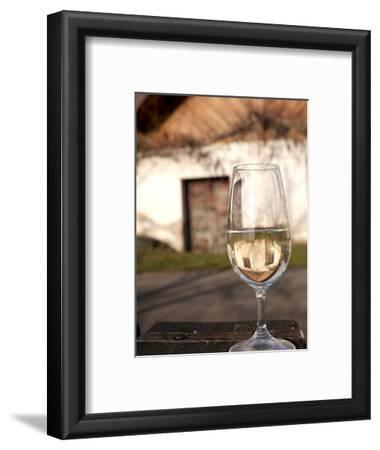 Glass of White Wine (Riesling) at Wine Cellar, Village of Vlkos, Brnensko, Czech Republic, Europe