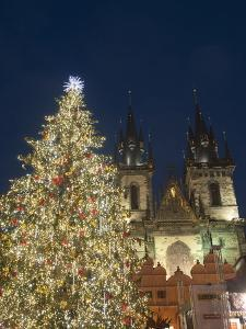 Gothic Tyn Church, Christmas Tree at Twilight in Old Town Square, Stare Mesto, Prague by Richard Nebesky