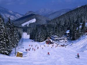 People Skiing on Jasna Run, Jasna Resort, Low Tatra Mountains, Slovakia by Richard Nebesky