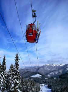 Red Cable-Car on Otupune Run, Jasna Resort. Jasna, Slovakia by Richard Nebesky