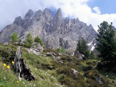Sassolungo Range, 3181M, Val Gardena, Dolomites, Alto Adige, Italy