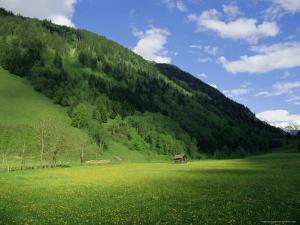 Stubachtal Valley, Hohe Tauern National Park, Salzburgland, Austrian Alps, Austria, Europe by Richard Nebesky