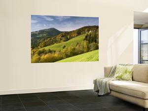 Valley on Southern Pohorje Mountain Range by Richard Nebesky