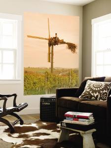 Vineyard Windmill by Richard Nebesky