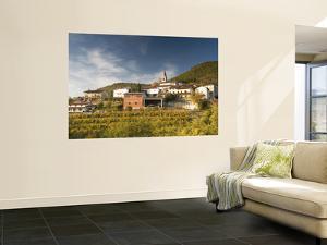 Vineyards and Village of Gabrje, Vipava Valley Wine Region by Richard Nebesky