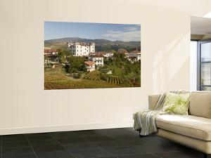 Vineyards, Dobrovo Castle and Town in Goriska Brdy Wine Region by Richard Nebesky