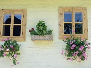Windows of One of Unique Village Architecture Houses in Vlkolinec Village, Velka Fatra Mountains by Richard Nebesky