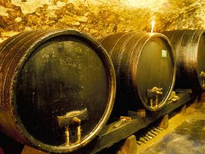 Wooden Kegs for Ageing Wine in Cellar of Pavel Soldan in Village of Modra, Slovakia by Richard Nebesky