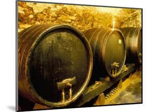 Wooden Kegs for Ageing Wine in Cellar of Pavel Soldan in Village of Modra, Slovakia by Richard Nebesky