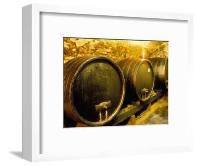 Wooden Kegs for Ageing Wine in Cellar of Pavel Soldan in Village of Modra, Slovakia