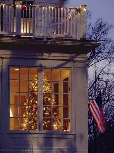 A View of a Christmas Tree Through a Window by Richard Nowitz