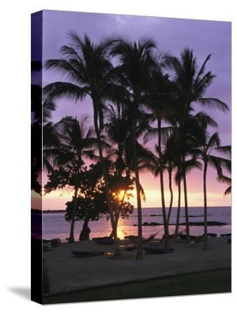 Coconut Trees Silhouetted on Mauna Lani Bay Hotels Beach at Sunset