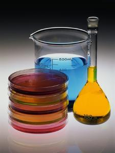 Containers of Chemicals by Richard Nowitz