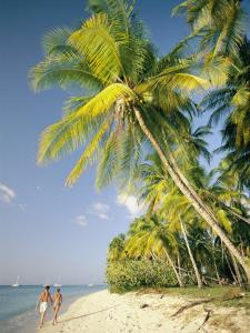 Couple Strolls Down the Beach Beneath Swaying Palm Trees, Maracas Bay, Trinidad and Tobago by Richard Nowitz