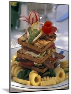 Gourmet Sandwich Served on a Balcony of a Restaurant in Amalfi, Italy by Richard Nowitz