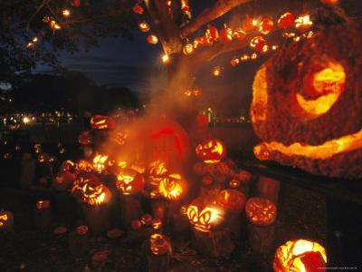 Grinning Lit Jack-O-Lanterns Filling a Tree and a Porch