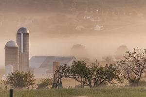 Morning Fog over Farm Along Pennsylvania Route 23 East of Lancaster, Pennsylvania by Richard Nowitz