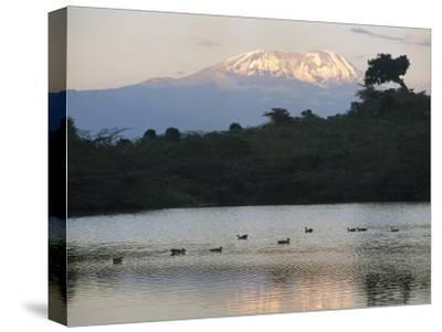 Mount Kilimanjaro Rises above One of Tanzanias Momela Lakes