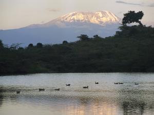 Mount Kilimanjaro Rises above One of Tanzanias Momela Lakes by Richard Nowitz