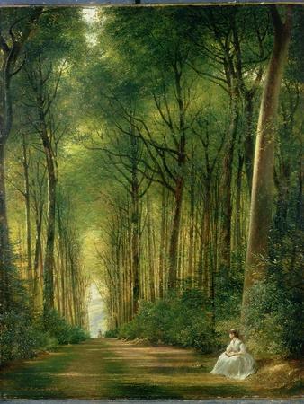 The Beech Avenue, Denbies, 1870