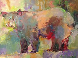 artbear by Richard Wallich