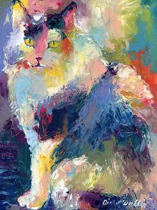 Cat by Richard Wallich