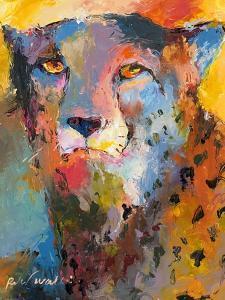 Cheetah by Richard Wallich