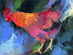 Rooster by Richard Wallich