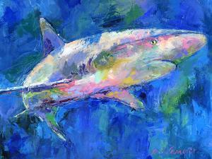 Shark by Richard Wallich