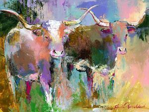 Texas Longhorns by Richard Wallich