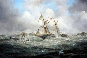 Rescue At Last by Richard Willis
