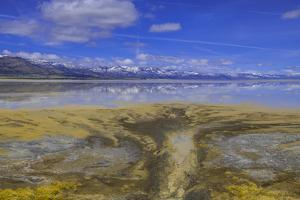 A delta on Middle Alkali Lake east of Cedarville, California. by Richard Wright