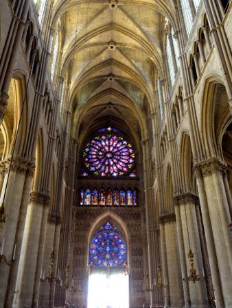 Stained Glass Rose Window, Notre-Dame Cathedral, Reims, Marne, Champagne-Ardenne, France by Richardson Peter