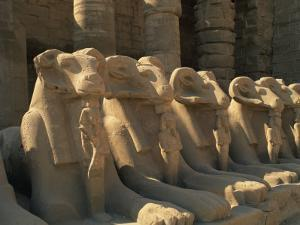 Ram-Headed Sphinxes of the Processional Avenue, at the Temple of Karnak, Thebes, Egypt by Richardson Rolf
