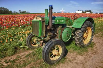 Old John Deere, Wooden Shoe Tulip Farm, Woodburn, Oregon, USA