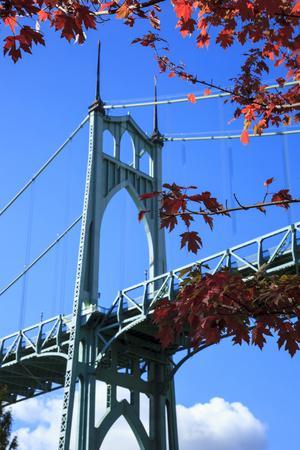 Oregon, Portland, Cathedral Park, St. John's Bridge