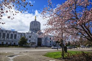 State Capitol Building, Salem, Oregon, USA by Rick A. Brown