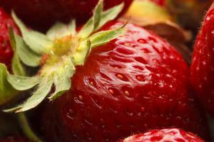 USA, Oregon, Keizer, Locally Grown Strawberry by Rick A. Brown