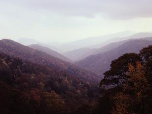 Smoky Mountains in the Mist by Rick Barrentine