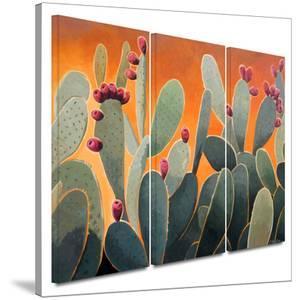 Cactus Orange 3 piece gallery-wrapped canvas by Rick Kersten