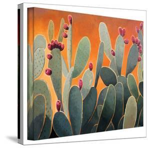 Rick Kersten 'Cactus Orange' Gallery Wrapped Canvas by Rick Kersten