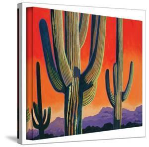 Rick Kersten 'Saguaro Dawn' Gallery Wrapped Canvas by Rick Kersten