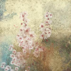 Cherry Blossom Abstract II by Rick Novak