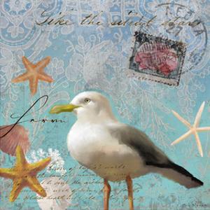 Gull Beach II by Rick Novak