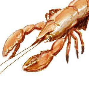 Illustrated Lobster I by Rick Novak