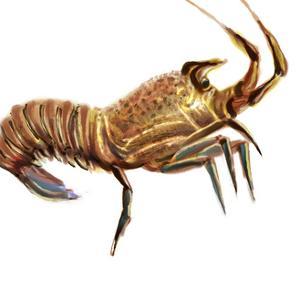 Illustrated Lobster II by Rick Novak