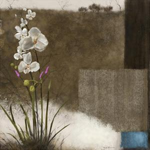 Orchid III by Rick Novak